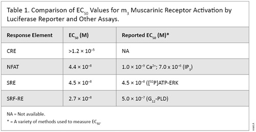 Comparison of EC50 Values for m3 Muscarinic Receptor Activation by Luciferase Reporter and Other Assays.